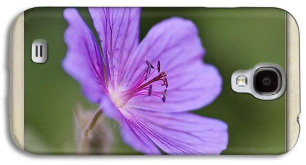 Geranium Maculatum Galaxy S4 Case by John Edwards
