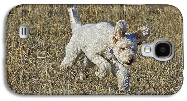 Goldendoodle Running Galaxy S4 Case by William H. Mullins
