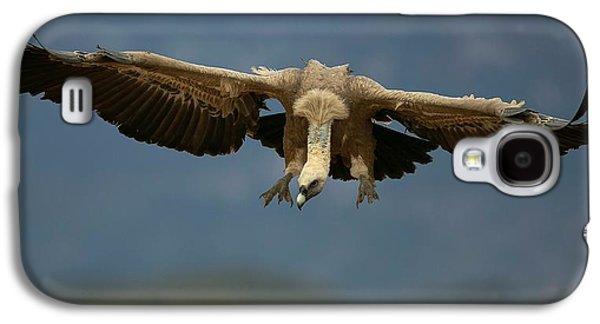 Griffon Galaxy S4 Case - Griffon Vulture Flying by Nicolas Reusens