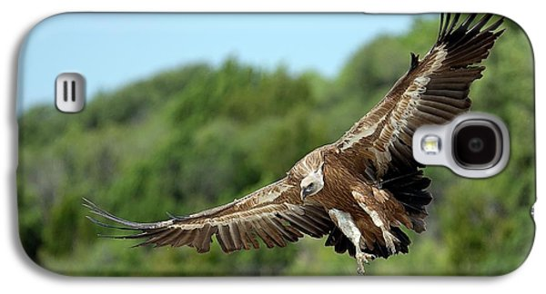 Griffon Vulture Galaxy S4 Case