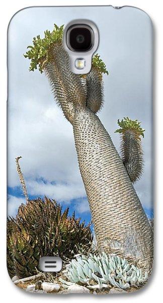 Halfmens Tree Galaxy S4 Case