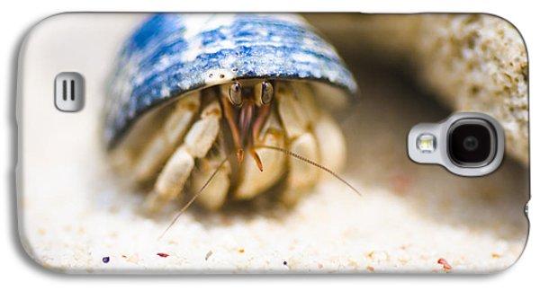 Hiding Hermit Crab Galaxy S4 Case