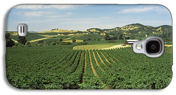 High Angle View Of A Vineyard, Carneros Galaxy S4 Case by Panoramic Images