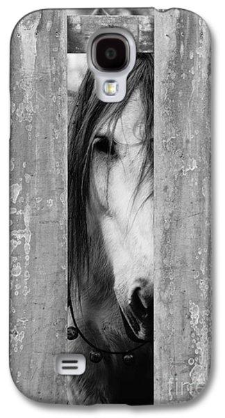 Horse Board 2 Galaxy S4 Case by Lynda Dawson-Youngclaus