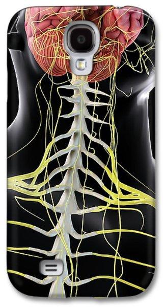 Human Brain And Spinal Cord Galaxy S4 Case