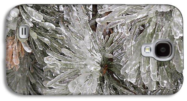 Ice On Pine Branches Galaxy S4 Case by Blink Images