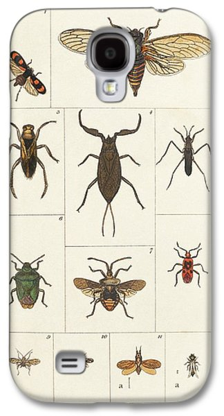 Insects Galaxy S4 Case by King's College London