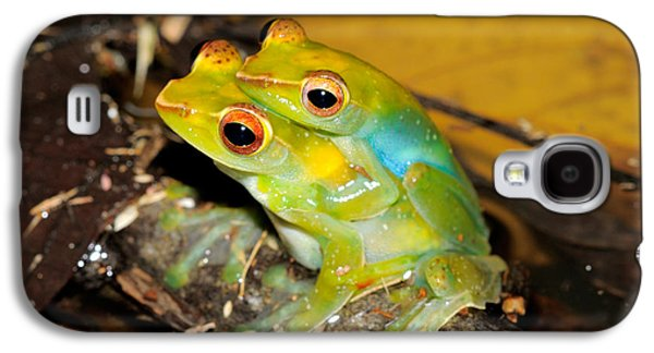 Jade Tree Frogs Mating Galaxy S4 Case by Fletcher & Baylis
