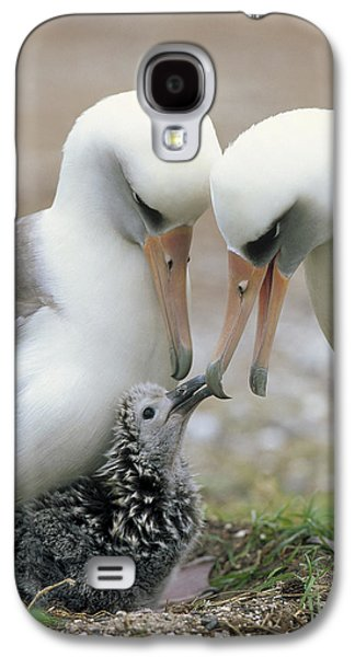 Laysan Albatross Parents Exchanging Galaxy S4 Case by Tui De Roy