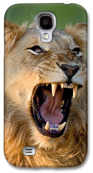Lion Galaxy S4 Case by Johan Swanepoel