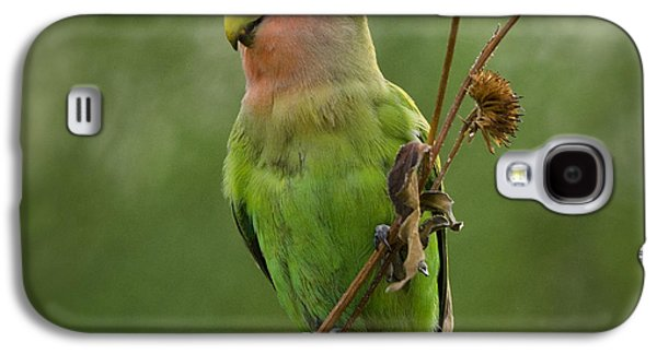 Lovely Little Lovebird  Galaxy S4 Case