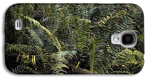 Loxahatchee Refuge-4 Galaxy S4 Case