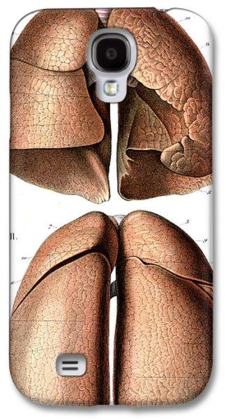 Lung Anatomy Galaxy S4 Case