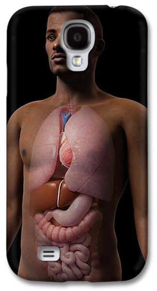 Male Internal Organs Galaxy S4 Case