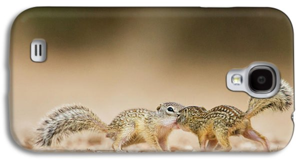 Mexican Ground Squirrel (spermophilus Galaxy S4 Case by Larry Ditto