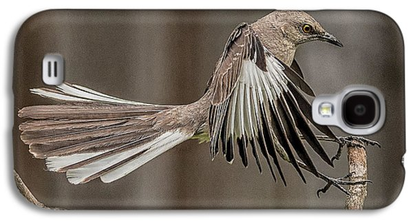 Mockingbird  Galaxy S4 Case by Rick Barnard