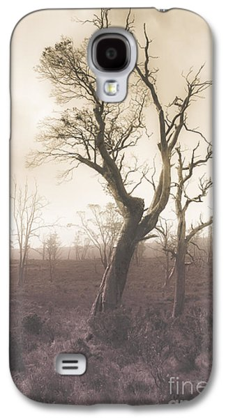 Mystery Tree In A Dark Scary Forest Galaxy S4 Case