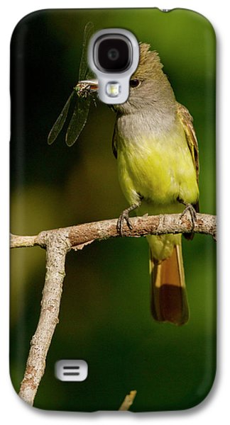 Flycatcher Galaxy S4 Case - North America, Usa, Central by Joe and Mary Ann Mcdonald