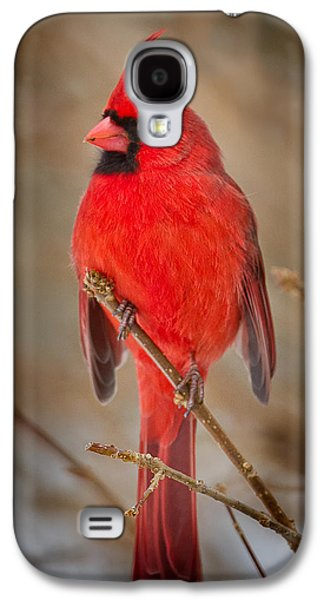 Northern Cardinal Galaxy S4 Case by Bill Wakeley
