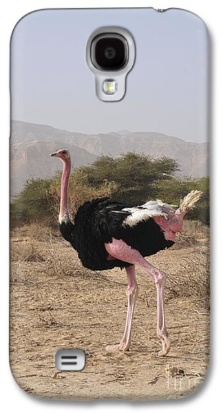Ostrich In A Nature Reserve Galaxy S4 Case by PhotoStock-Israel
