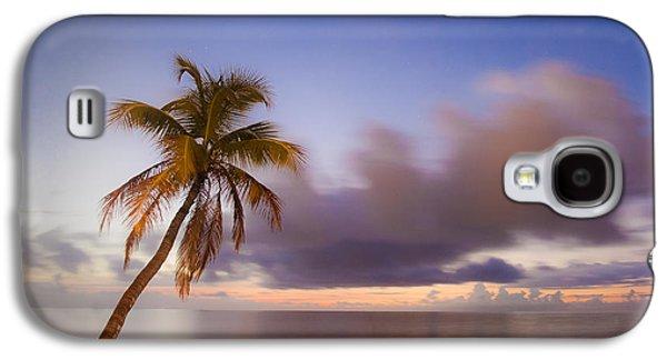 Palm Galaxy S4 Case