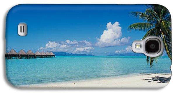 Palm Tree On The Beach, Moana Beach Galaxy S4 Case