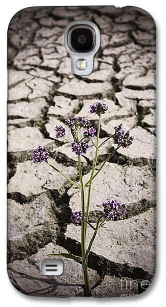 Plant Growing Through Dirt Crack During Drought   Galaxy S4 Case by Jorgo Photography - Wall Art Gallery