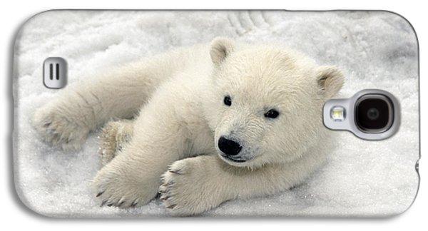 Polar Bear Cub Playing In Snow Alaska Galaxy S4 Case by Mark Newman
