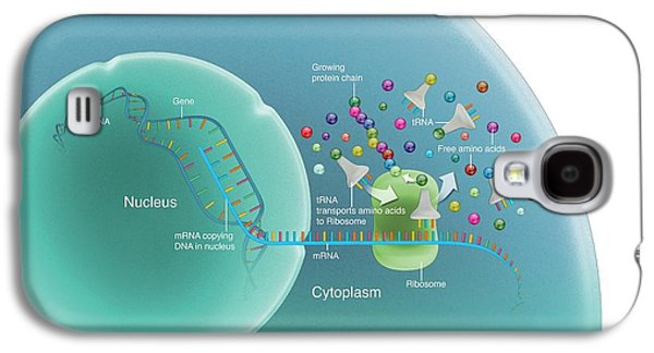 Protein Synthesis Galaxy S4 Case