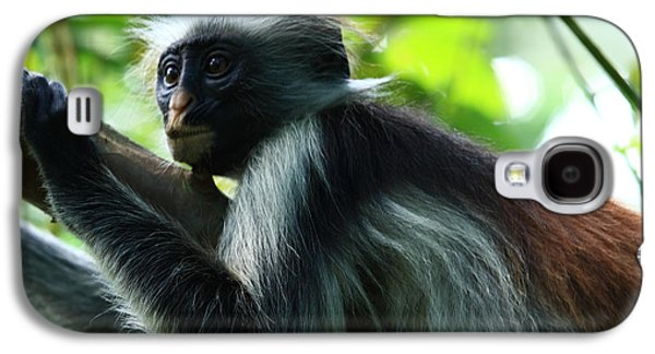 Red Colobus Monkey Galaxy S4 Case by Aidan Moran