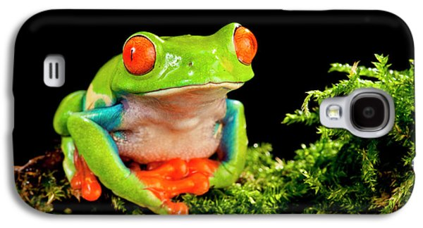 Red Eye Treefrog, Agalychnis Galaxy S4 Case