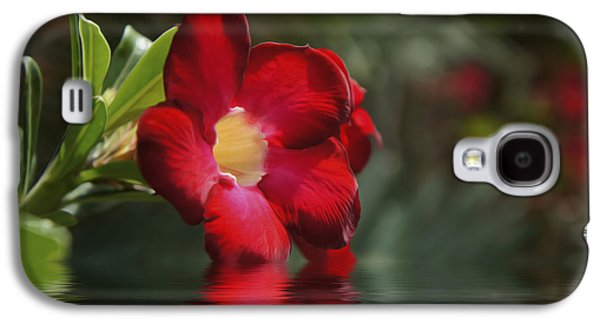 Red Flowers Galaxy S4 Case by Aged Pixel