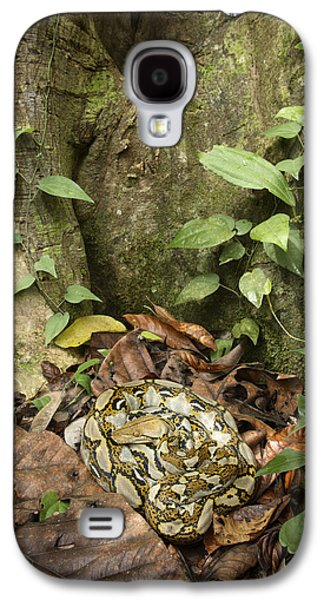 Reticulated Python Galaxy S4 Case