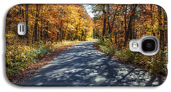 Road In Fall Forest Galaxy S4 Case by Elena Elisseeva