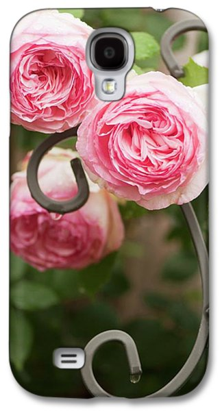 Rosa 'eden' Flowers Galaxy S4 Case by Maria Mosolova