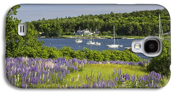 Round Pond Lupine Flowers On The Coast Of Maine Galaxy S4 Case