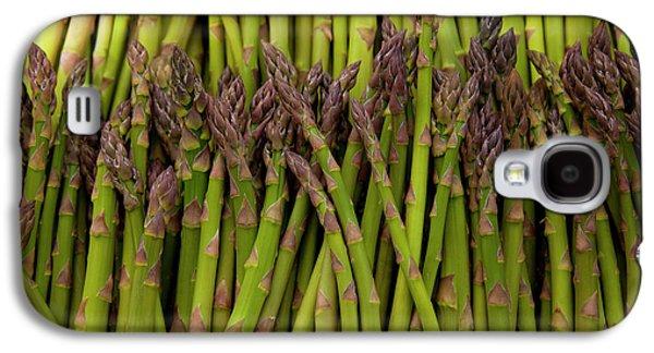 Scotts Asparagus Farm, Marlborough Galaxy S4 Case by Douglas Peebles