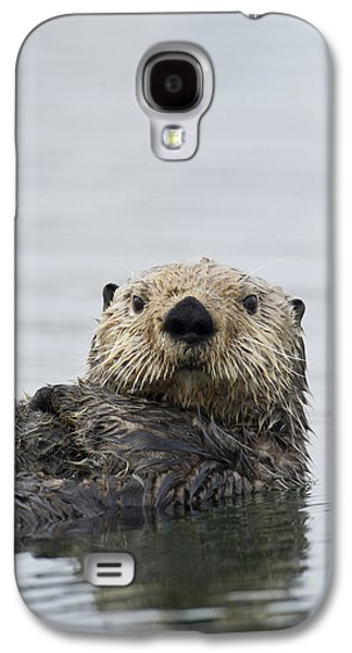 Sea Otter Alaska Galaxy S4 Case