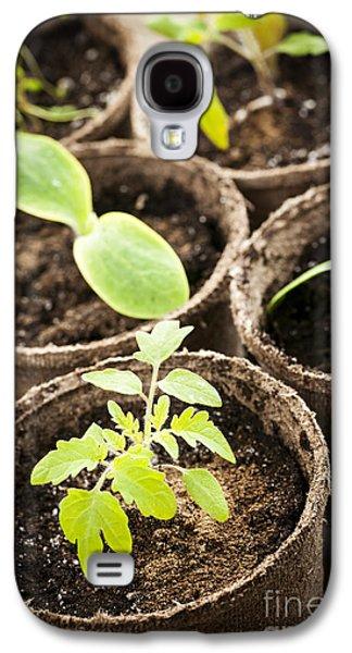 Seedlings Growing In Peat Moss Pots Galaxy S4 Case by Elena Elisseeva