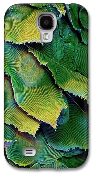 Spanish Moss Leaves Galaxy S4 Case