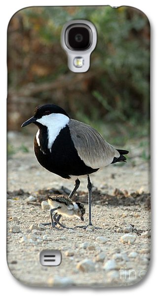 Spur-winged Plover And Chick Galaxy S4 Case