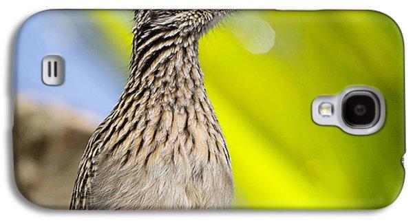 The Roadrunner  Galaxy S4 Case by Saija  Lehtonen