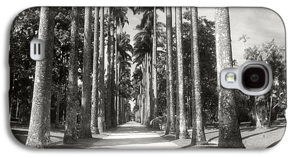 Trees Both Sides Of A Garden Path Galaxy S4 Case by Panoramic Images