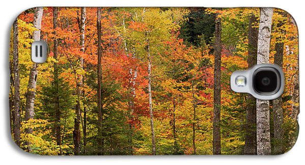 Usa, Maine, Bethel Galaxy S4 Case