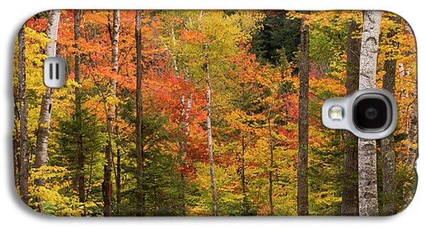 Usa, Maine, Bethel Galaxy S4 Case by Jaynes Gallery