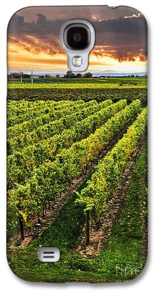 Vineyard At Sunset Galaxy S4 Case by Elena Elisseeva