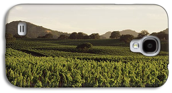 Vineyard With Mountains Galaxy S4 Case by Panoramic Images