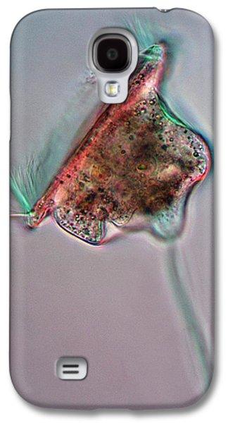 Voticella Protozoan Galaxy S4 Case by Marek Mis