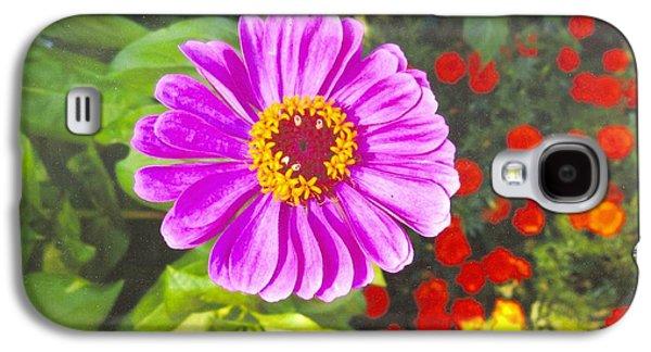 Warm Pink Zinnia Galaxy S4 Case by Rod Ismay