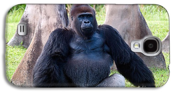 Western Lowland Gorilla Galaxy S4 Case by Mark Newman